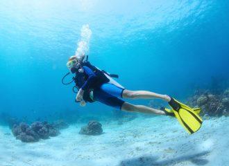 onde praticar mergulho conheca 4 lugares incriveis